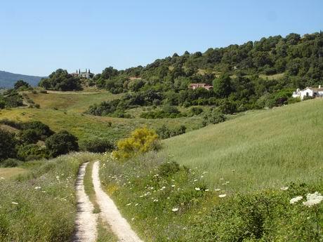Countryside around Gaucin