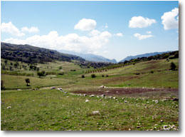 Fortuna Estates land in Andalucia, in the middle of nowhere