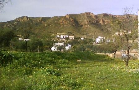 Los Pinos, Almeria