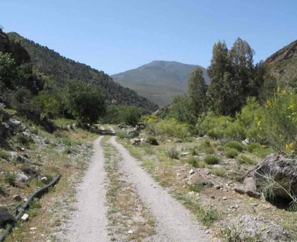 andalucia-alpujarras-country-road