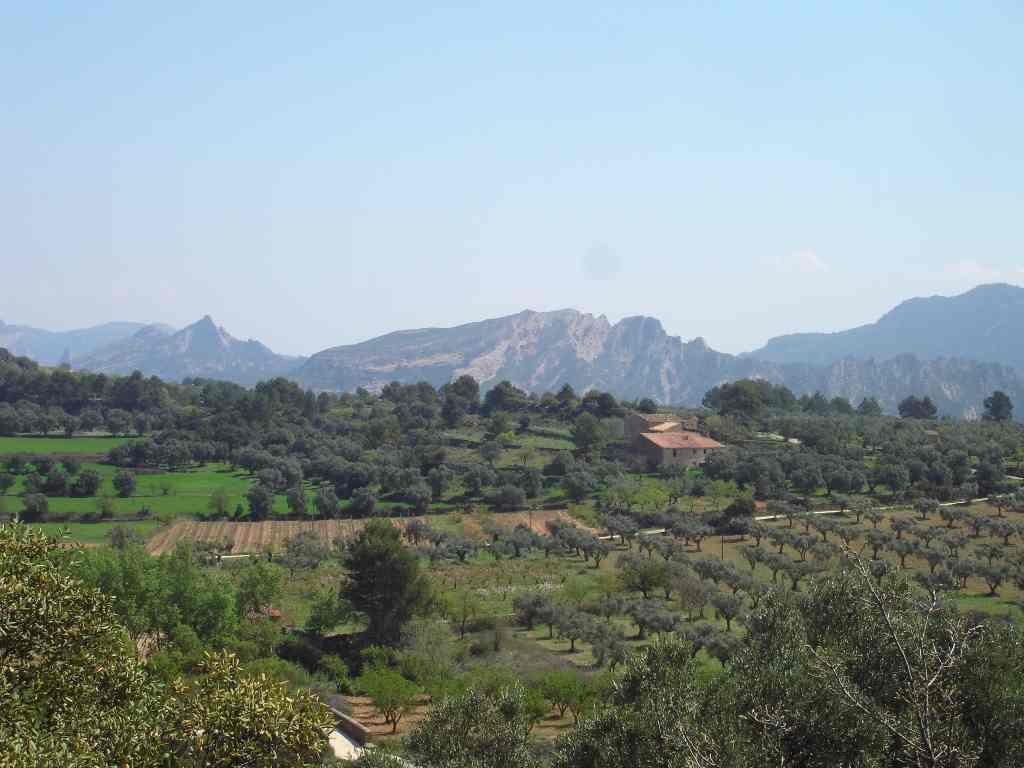 catalonia-tarragona-rural-baix-ebre