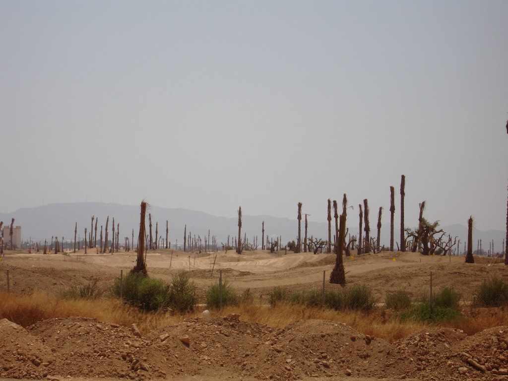 Murcia construction no green shoots in Spain