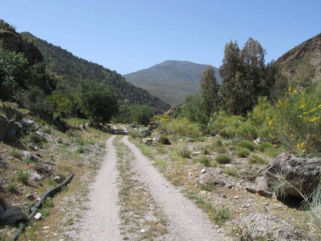 rural-andalucia-alpujarras-road