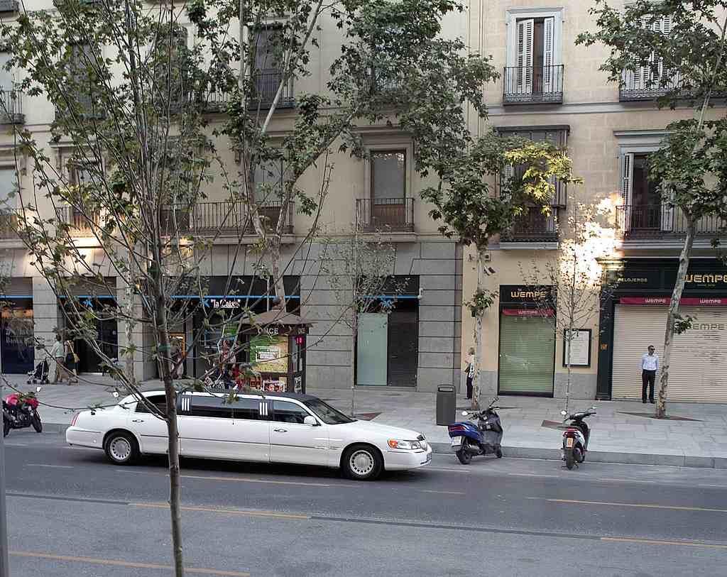 Calle Serrano, Madrid. © http://commons.wikimedia.org/wiki/User:FDV