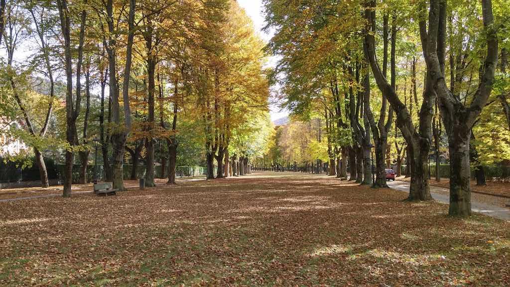 Passeig Maristany, Camprodon, Girona Province, Pyrenees.